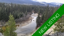 Valemount Land development for sale: Development Site Studio  (Listed 2017-06-01)